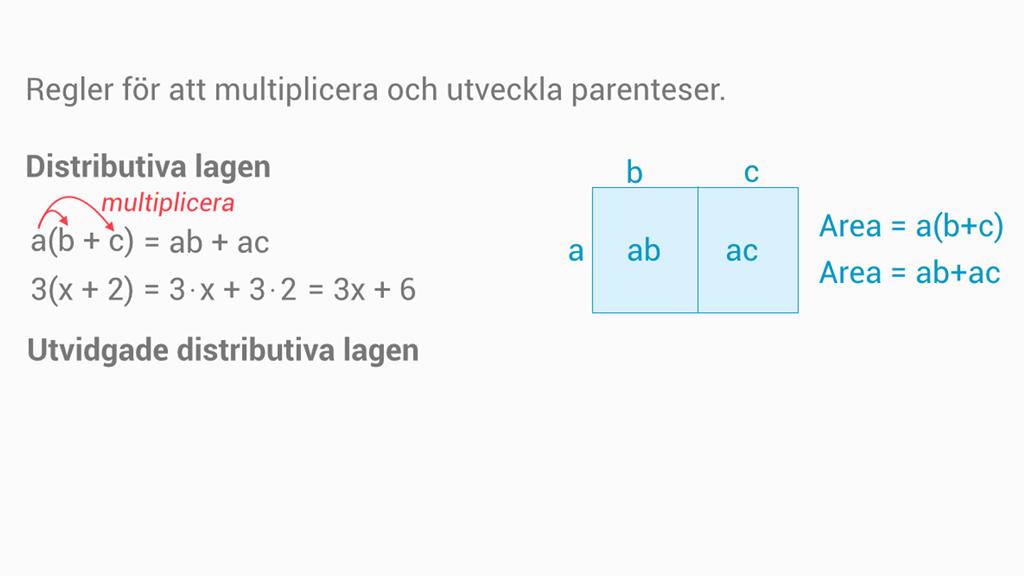 algebraiska uttryck