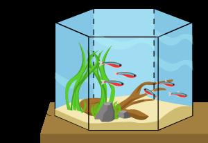 akvarium prisma