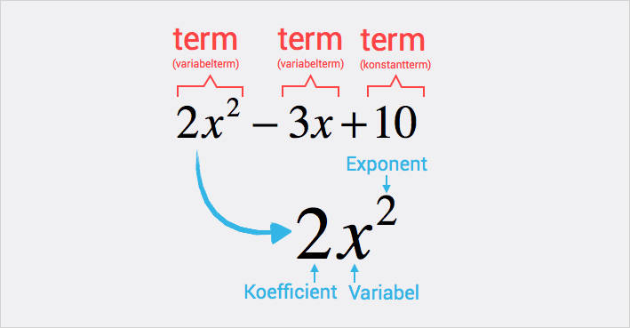 Algebra - termer, koefficienter, variabel, exponent